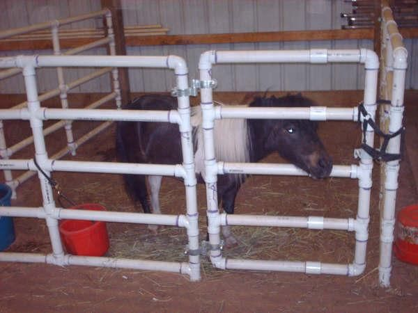 Build Portable Pvc Corral Pens For Your Pony Goat Pig