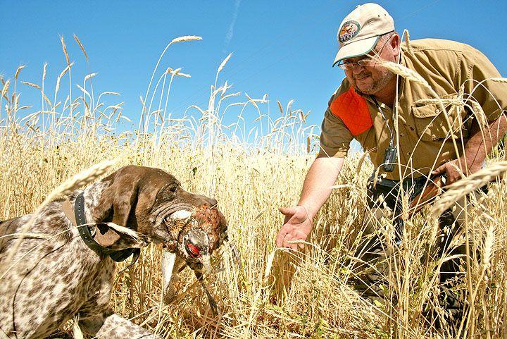 Bird Hunting Western Spirit Ranches Shoshone, ID