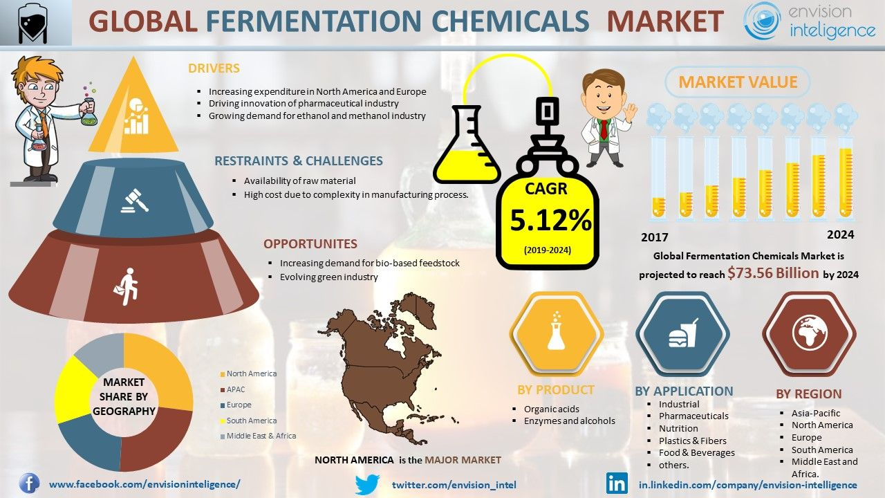 Fermentation Chemical Market Size Outlook Trends And Forecasts
