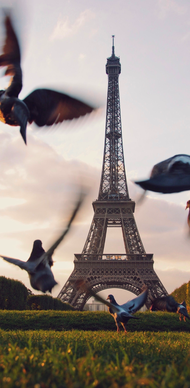 Paris. Visit our Instagram for more Photography Inspo. Would you like to Travel more? You are interested in Traveling Photography, Photography Places or Travel Bucket List Destinations? Learn How to Shoot and Marketing For Photographers   with your Gorgeous Photography, How to Start your Photography Business and acquire Financial Freedom. #Photography #PhotoIdeas #ideasforPhotography #BloggingPhotography #TravelPhotography #MakeMoney #TravelPhotographyIdeas