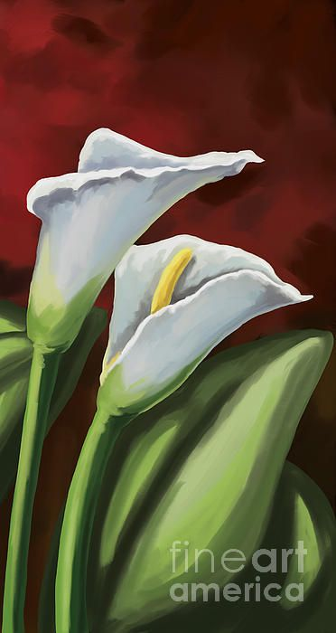 How To Paint A Calla Lily Flower In Easy Step By Step Acrylic Full Painting Tutorial By Jm Lisondra Youtube Art Painting Tools Diy Art Painting Lily Painting