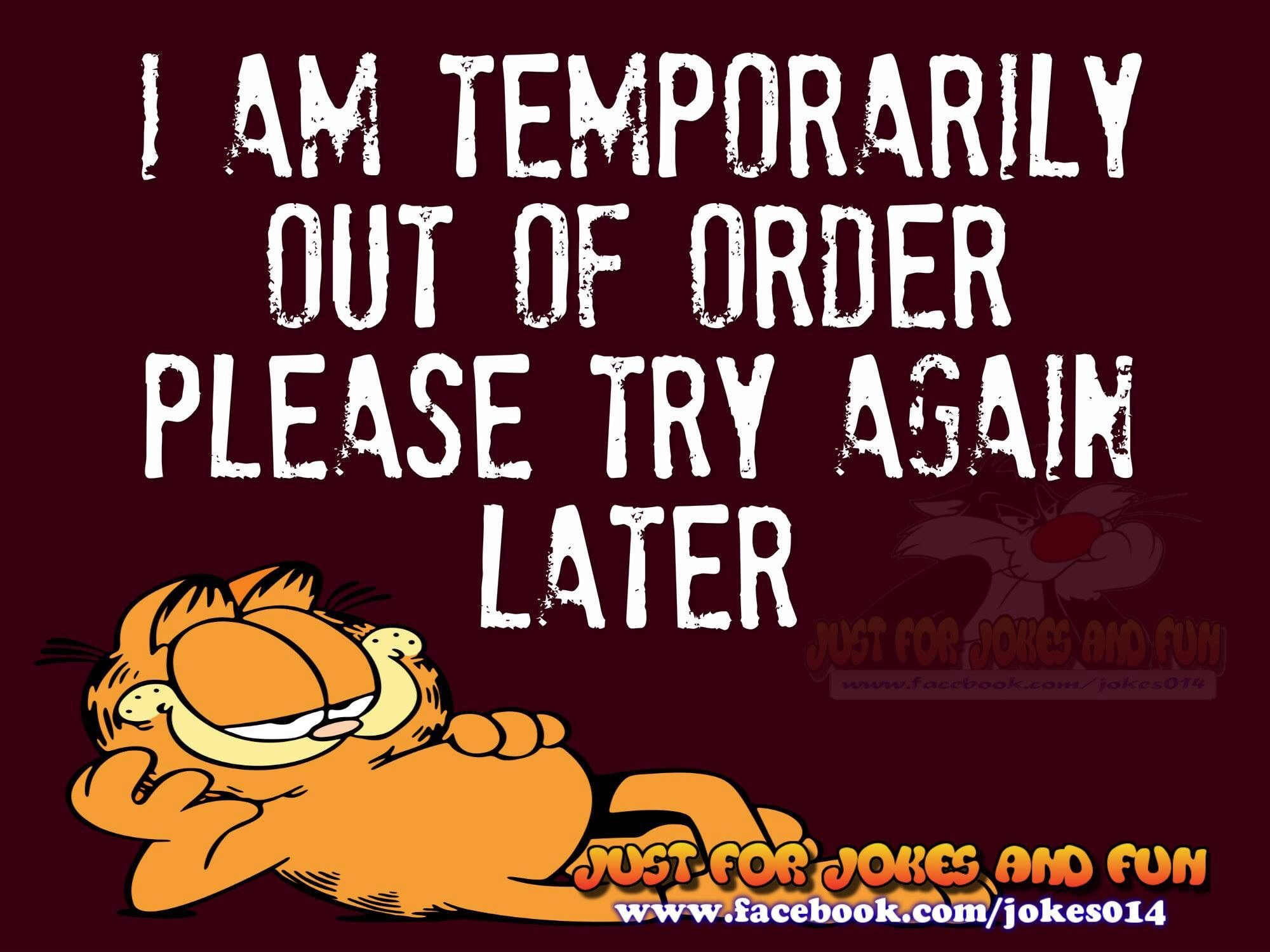 I Am Temporarily Out Of Order Garfield Quotes Funny Cartoons Laughter The Best Medicine