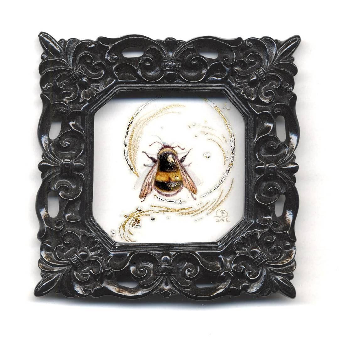 Since you guys said you like #bees.  #bumblebees #beautifulbugs http://tinyurl.com/descantslaunch
