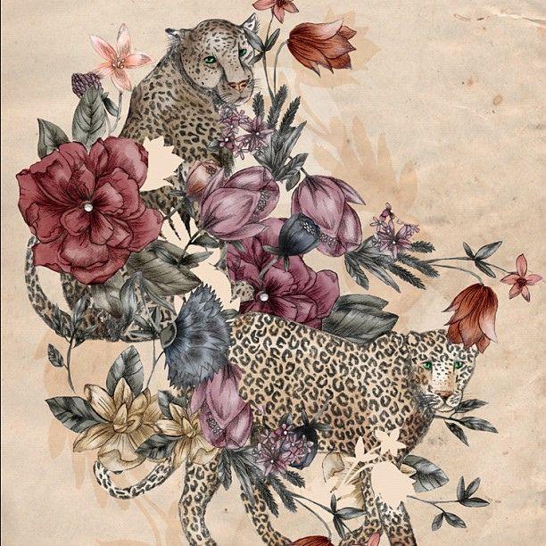 Leopards ! by Elissa Rocabado, via Flickr