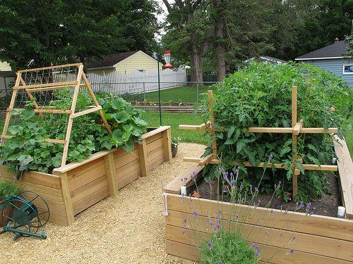 The Garden - Raised Beds