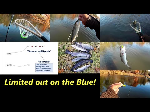 How We Fished The Blue River Saturday Limited Out Flyfishing Stocker Trout Fishing Blue River Trout Fishing Fly Fishing