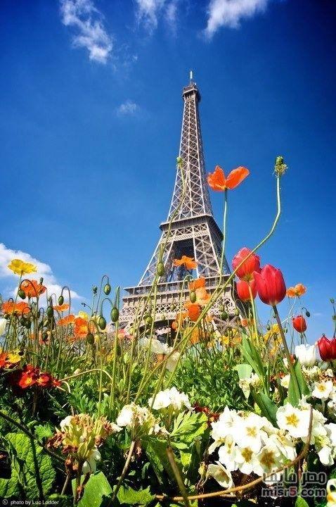 نتيجة بحث الصور عن صور برج ايفل Eiffel Tower Honeymoon Places Visit Paris