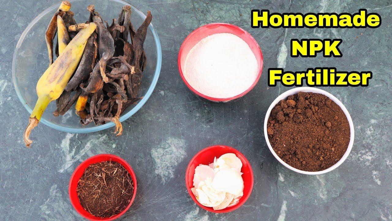 Homemade Organic Npk Fertilizer For Any Plants Using Tea Leaves