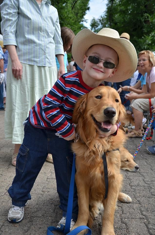 Luther Comfort Dog At The Parade In Prescott Az On Saturday July