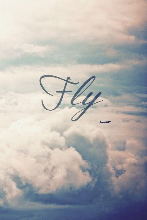 Aviationhumorflightattendant Fly Viaggi Aerei Idee