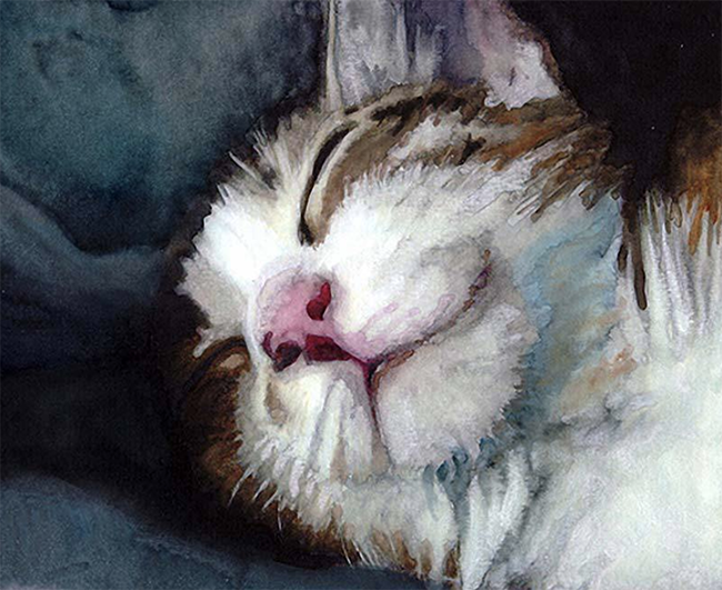 Incredible #watercolor #painting by Alex Carter at Gather Dream Create! Site created by Teresa Kogut...a place for inspiration and helpful tips.  #cat #artist