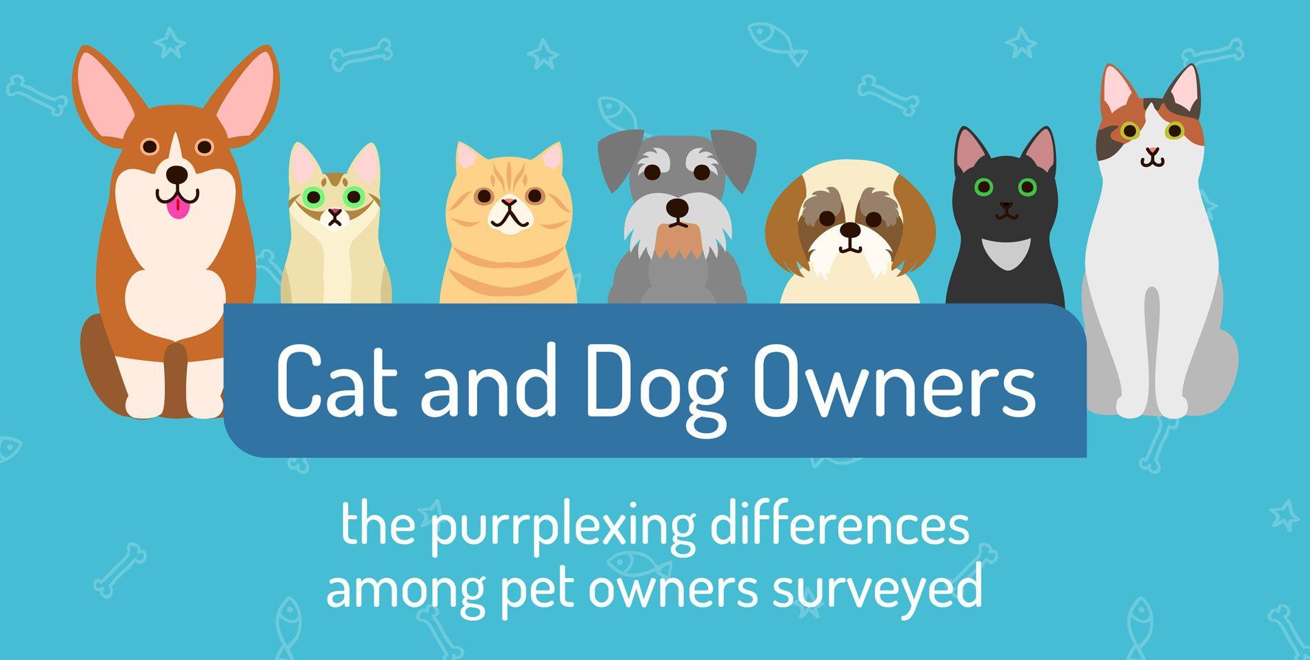 Paws for Thought Survey Compares Cat and Dog Owners Dog
