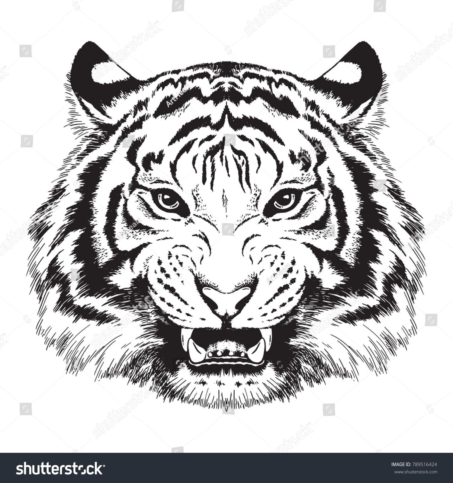 Tiger Euclidean Png Animal Big Cats Black Black And White Carnivoran Tiger Illustration Tiger Silhouette Lion Silhouette