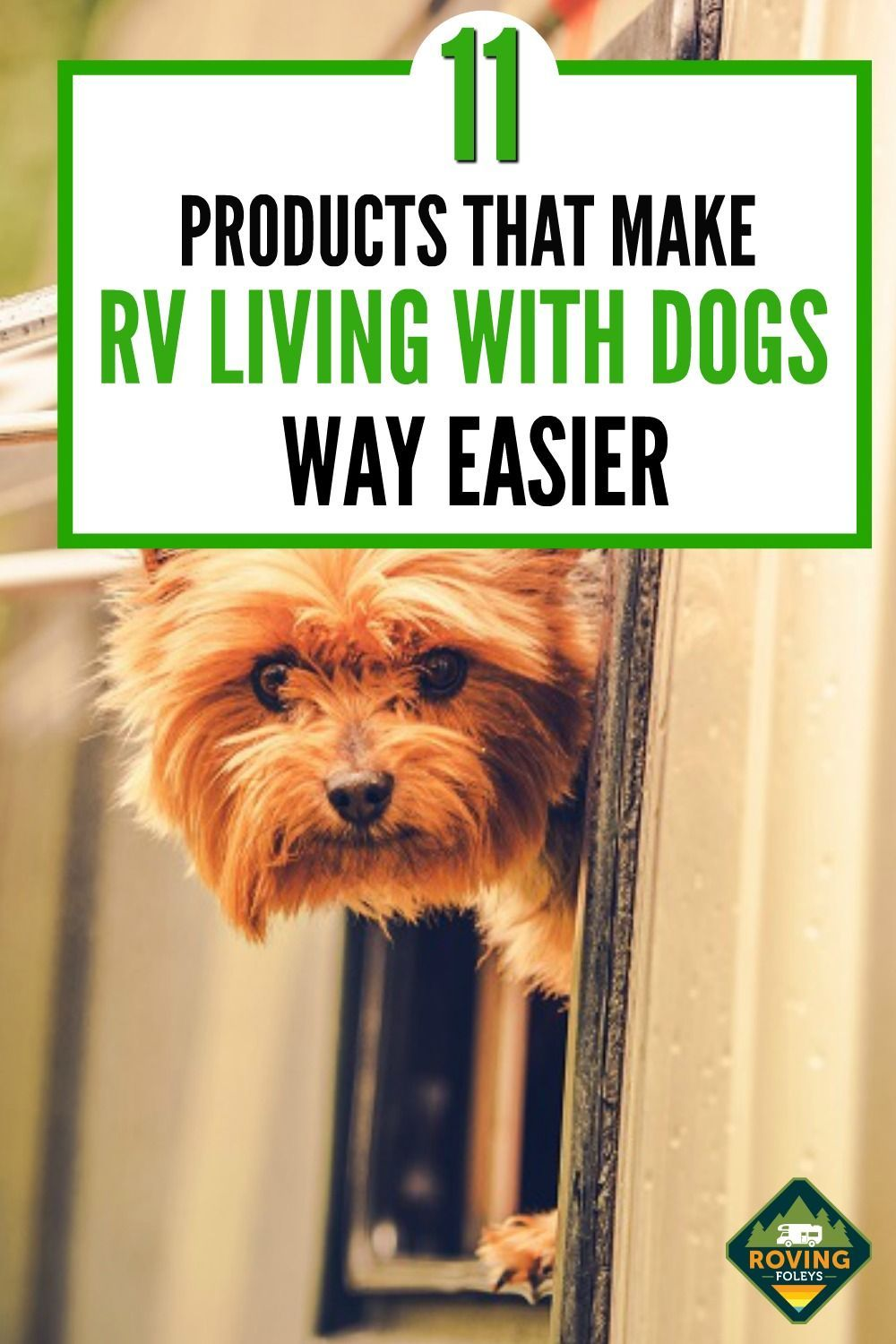 The Best Products That Make RV Living With Dogs Way Easier