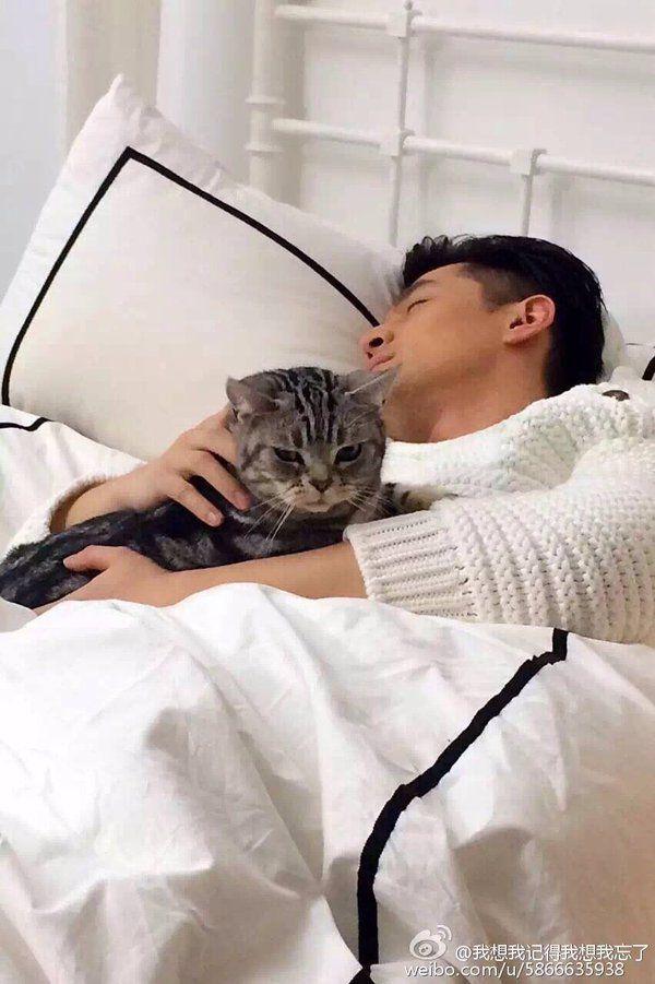 """[금릉봄/랑12] 세오니 on Twitter: """"@33vuu 고양이를 키우는 자와 고양이가 뭔지 모르는 것 같은 사람 https://t.co/LonVsTLbXr"""""""