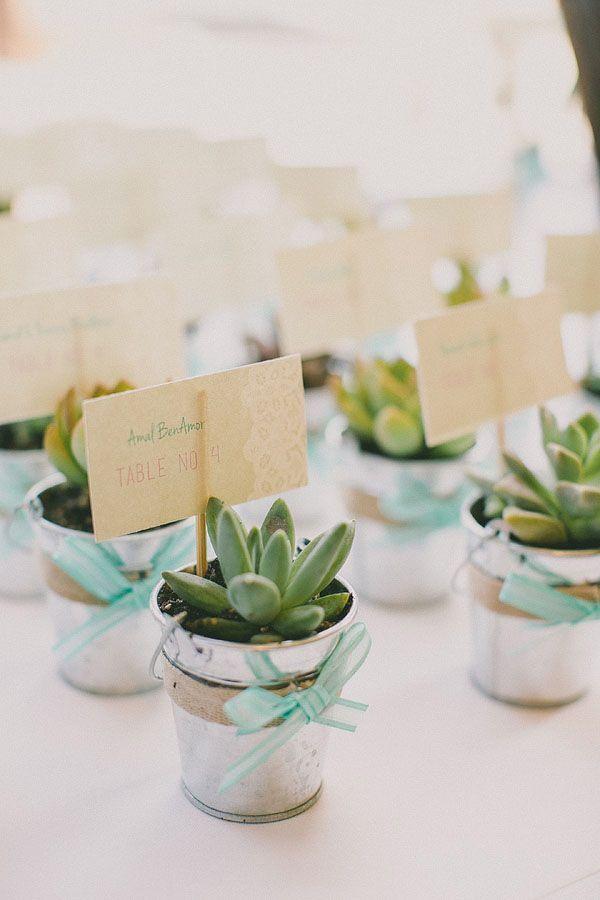 Recuerdos De Bautizo Con Cactus.Un Regalo Original Que A Todos Les Gustara Regala Una