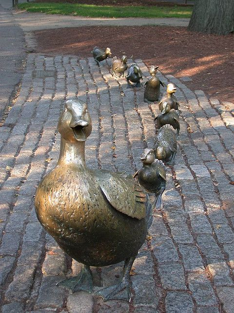 """Make Way for Ducklings"" - Boston Public Gardens"