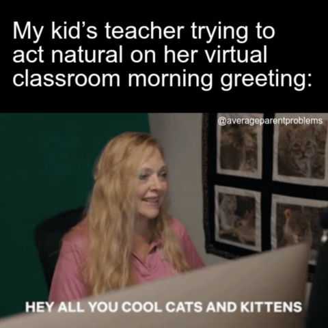 Pin By Amber Ford On Teacher In 2020 Distance Learning Virtual Classrooms Memes