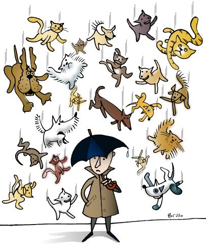 English Picture Idioms Raining Cats And Dogs Figurative Language Idioms English Idioms