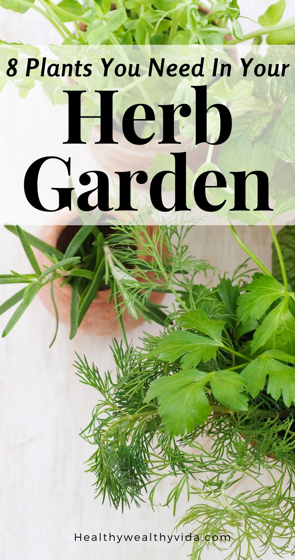8 Plants You Need In Your Herb Garden