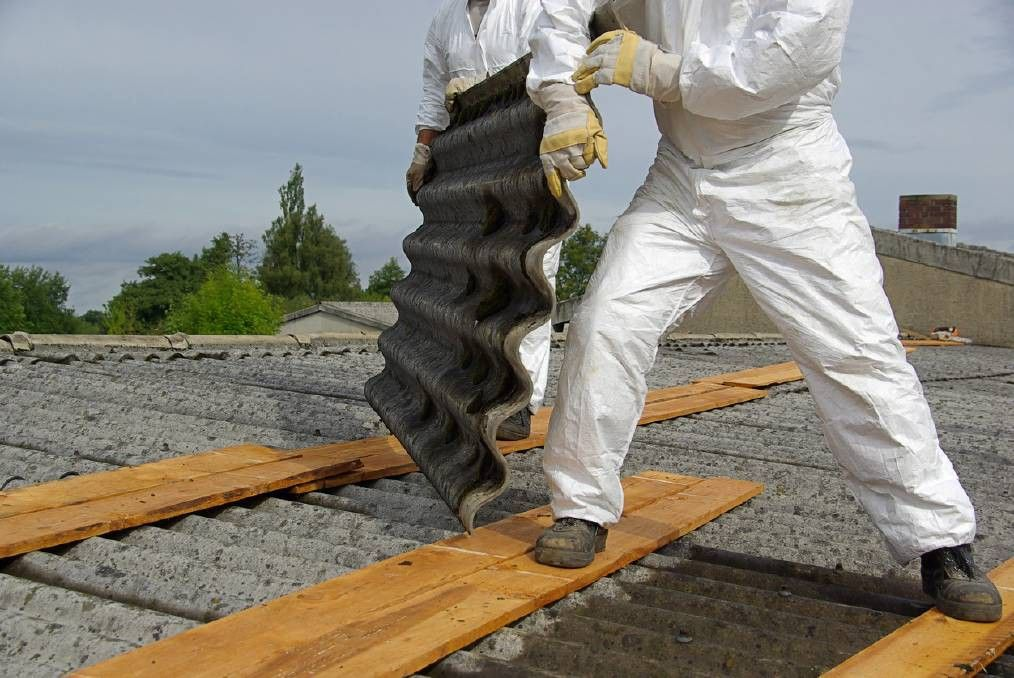 Asbestos Removal Brisbane | Roof replacement cost, Removal ...