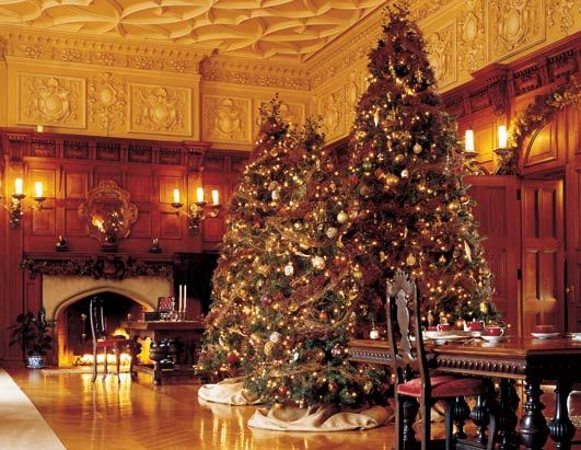 Biltmore Estate at Christmas. Been there and love it....am sure I ...
