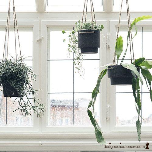 Norges førende designbutikk. Kjøp Ferm Living - Plant Hanger hos designdelicatessen.no. Rask levering. Vi gjør det trygt og enkelt å handle på nett.