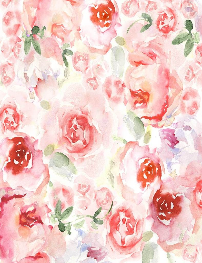 Watercolor Painted Pink Rose Flower Photography Backdrop J 0801