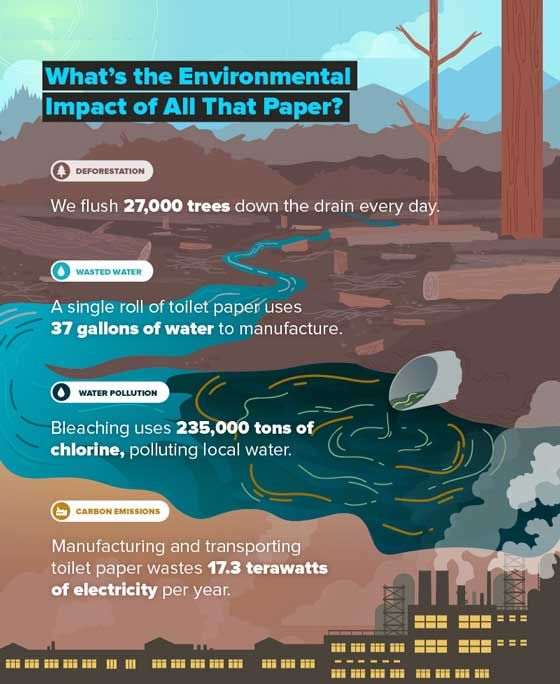 Saving The Planet One Bidet At A Time Environmental Impact