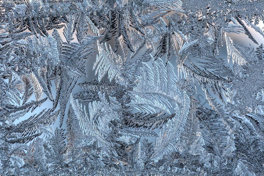 Siniset jääkukat - jäätynyt jäätyä jää kiteet talvi-ikkuna huurre jääkukka jääkukat pakkanen ikkunaruutu jäinen jäässä talvi kylmä pakkanen muoto luonnontaide kuurankukka kuurankukat
