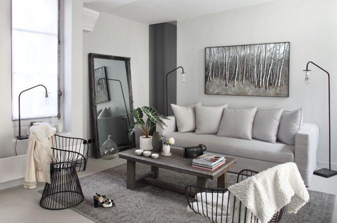 Salon gris - David Gaillard