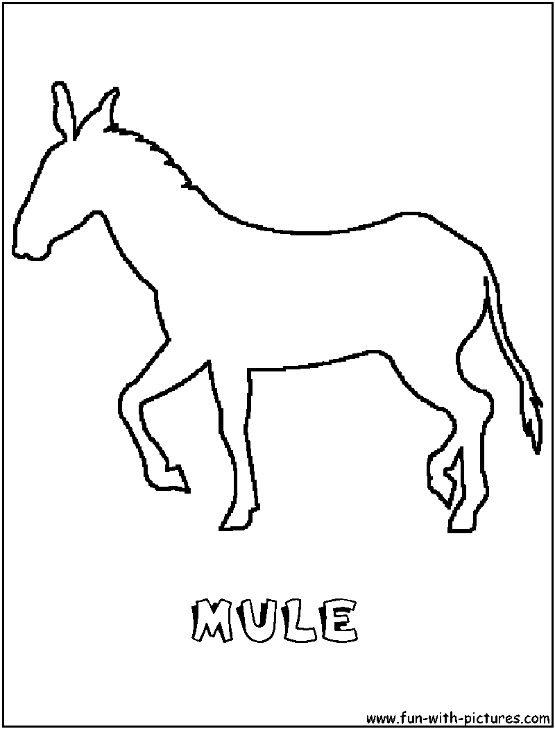 Mule Coloring Page Of Outline A Coloring Pages Horse Painting Coloring Pictures