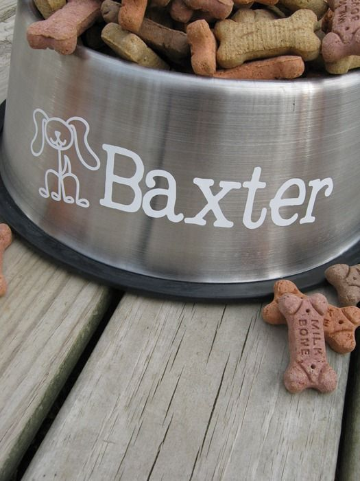 Personalized dog bowl tutorial tap the pin for the most adorable pawtastic fur baby dog craftsvinyl