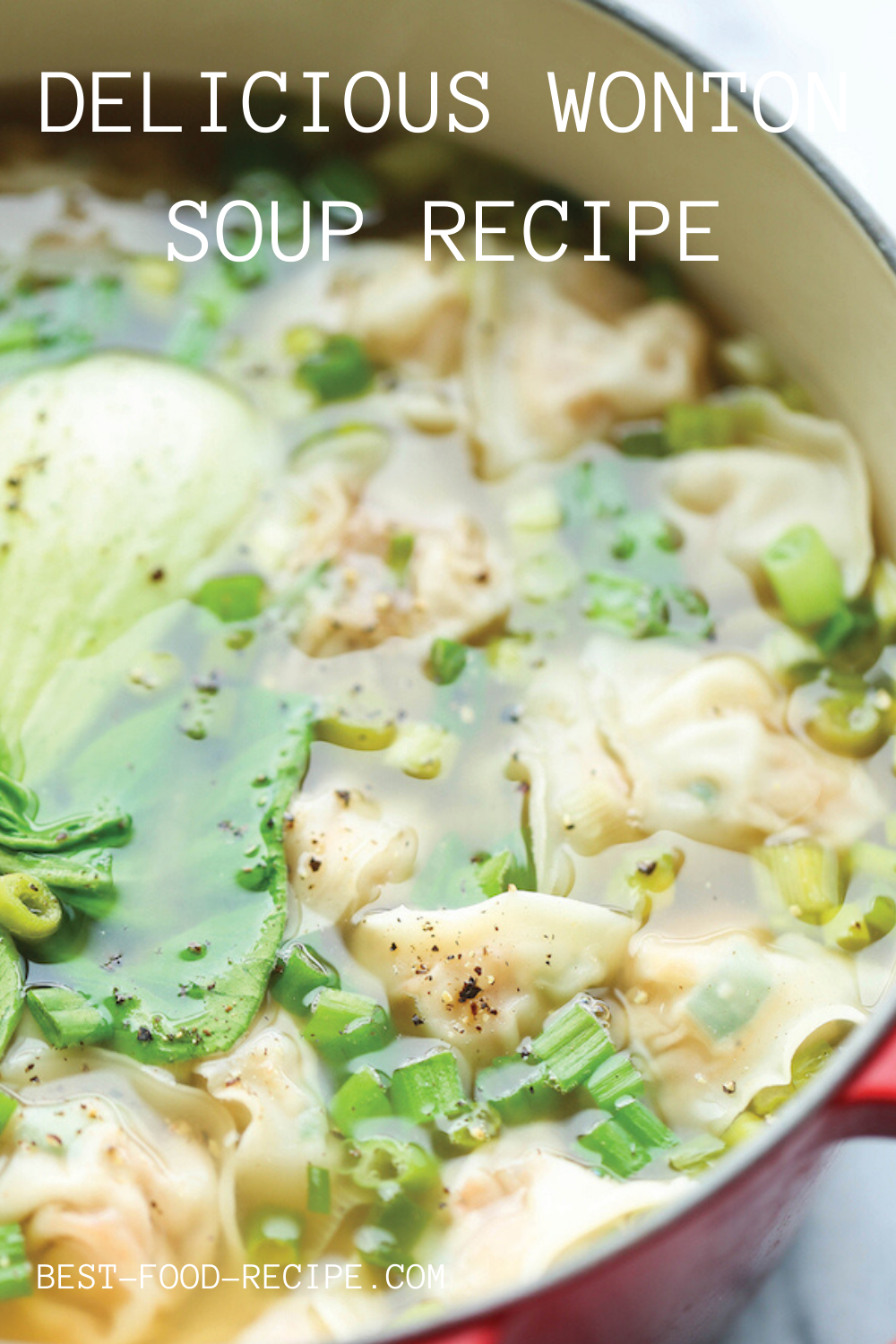 DELICIOUS WONTON SOUP in 2020 (With images) Soup recipes