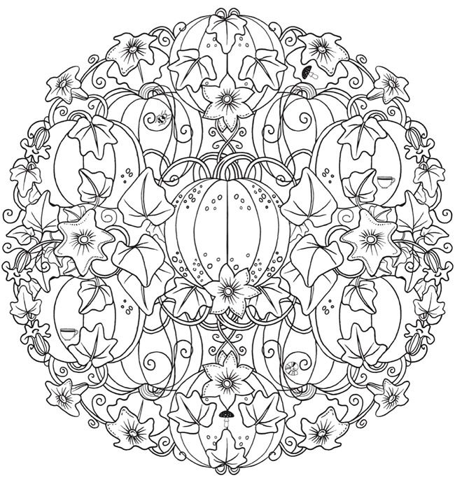 creative haven wonderous nature mandalas a coloring book with a hidden picture twist free. Black Bedroom Furniture Sets. Home Design Ideas