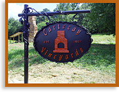 Amongst the famed apple orchards of Ellijay in Gilmer County, GA lies the county's first vineyard, Cartecay Vineyards. Named for the region of the county in which the vineyard is situated, Cartecay, Cherokee for Bread Valley, has a rich terroir, a combination of factors, including soil, climate and environment, that give our wine unique and distinctive character. Our goal is to allow the fullest expression of the Cartecay terroir in our grapes, and subsequently in our wines.