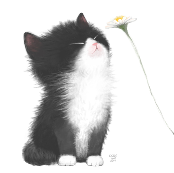 I can smell spring.  #dodothecat #dodomakesyousmile #catillust #drawings #animalillustration