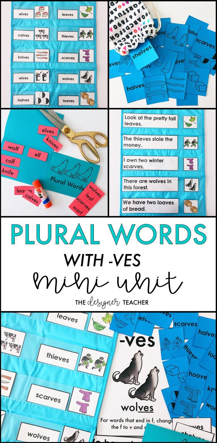 Phonics by Design Plural Words with Inflectional Ending -VES Mini Unit   Student reading. Plural words. Alphabet phonics