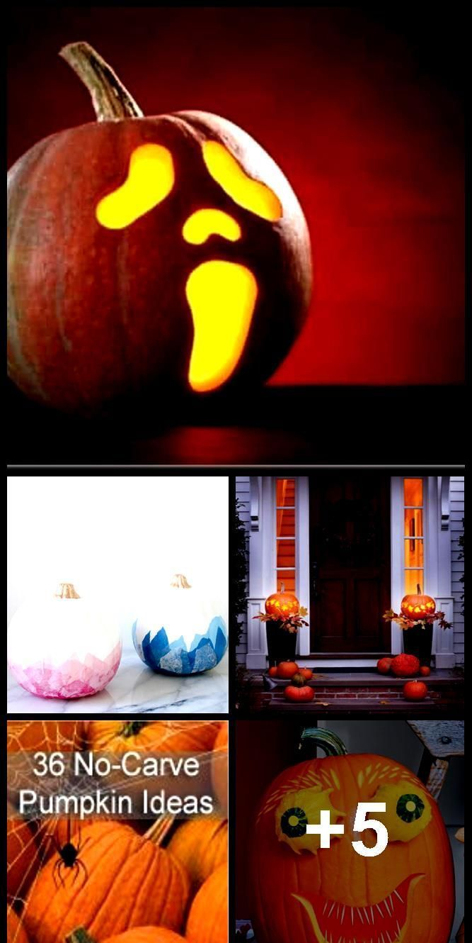 40 Creative Pumpkin Painting Ideas for a No-Mess Halloween #pumpkinpaintingideas... #pumpkinpaintingideascreative 40 Creative Pumpkin Painting Ideas for a No-Mess Halloween #pumpkinpaintingideas...,  #Creative #Halloween #Ideas #NoMess #painting #Pumpkin #pumpkinpaintingideas #pumpkinpaintingideas 40 Creative Pumpkin Painting Ideas for a No-Mess Halloween #pumpkinpaintingideas... #pumpkinpaintingideascreative 40 Creative Pumpkin Painting Ideas for a No-Mess Halloween #pumpkinpaintingideas...,  # #pumpkinpaintingideascreative