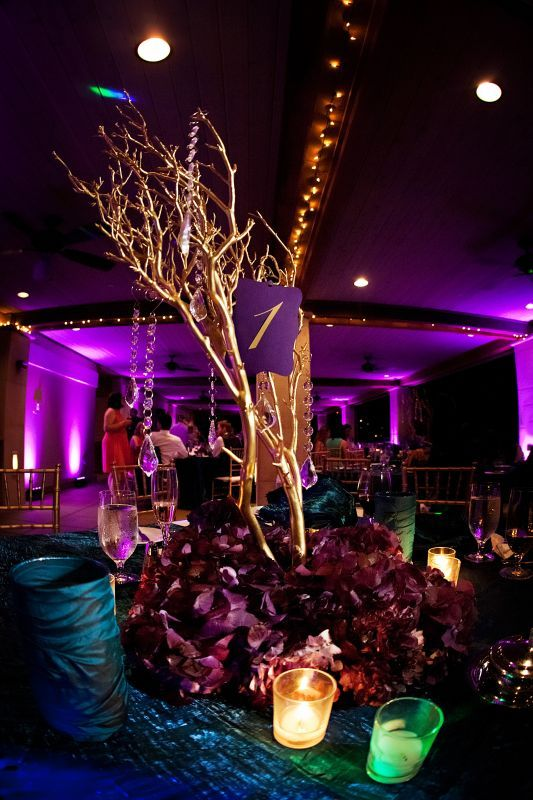 wedding centerpieces manzanita branches 1 purple reception 3.31.12StephanieBriceSM0447