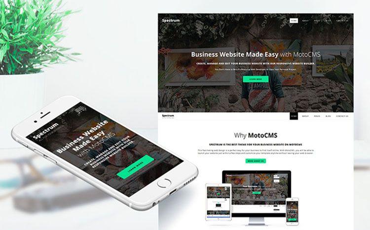 10 Responsive WordPress And MotoCMS Business Website
