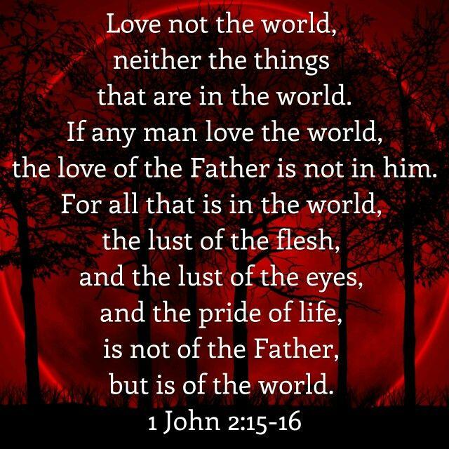 1 John 2: 15 - 16 ( KJV )