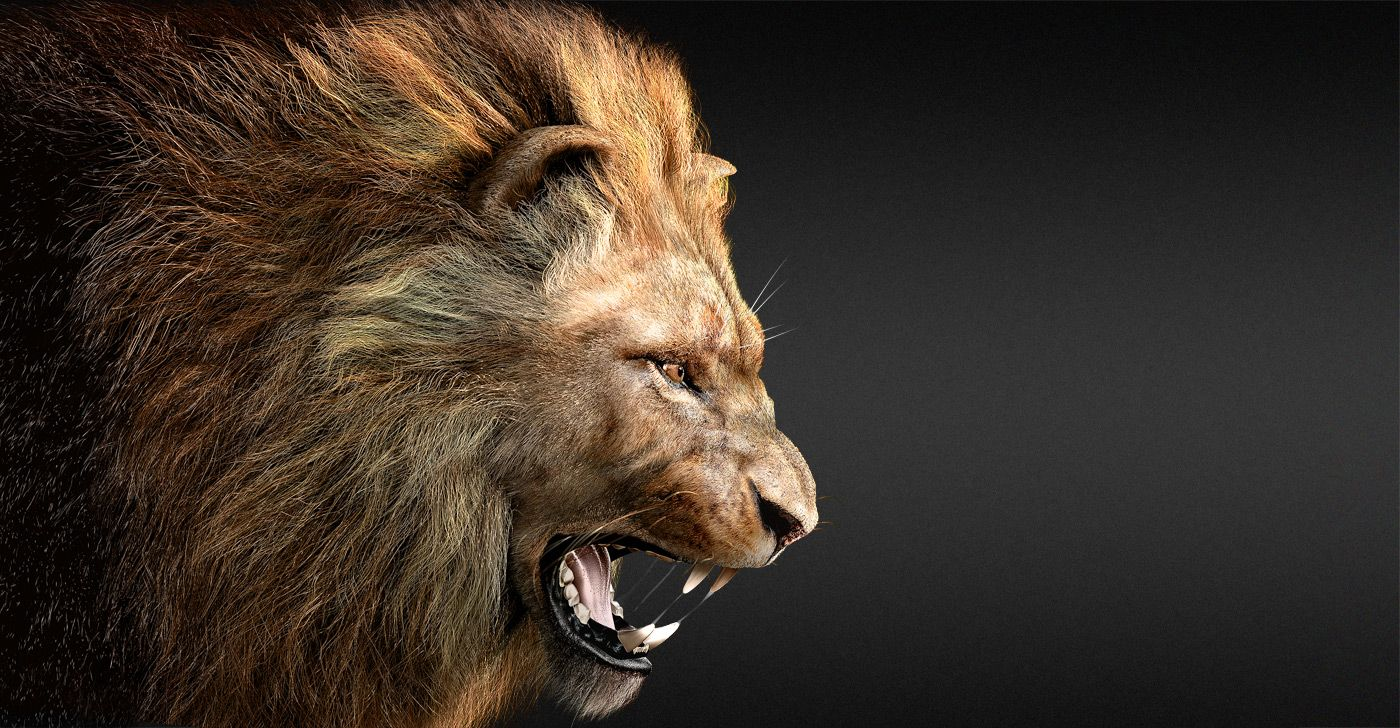 Lion\'s roar by Massimo Righi Nature 3D CGSociety Drag
