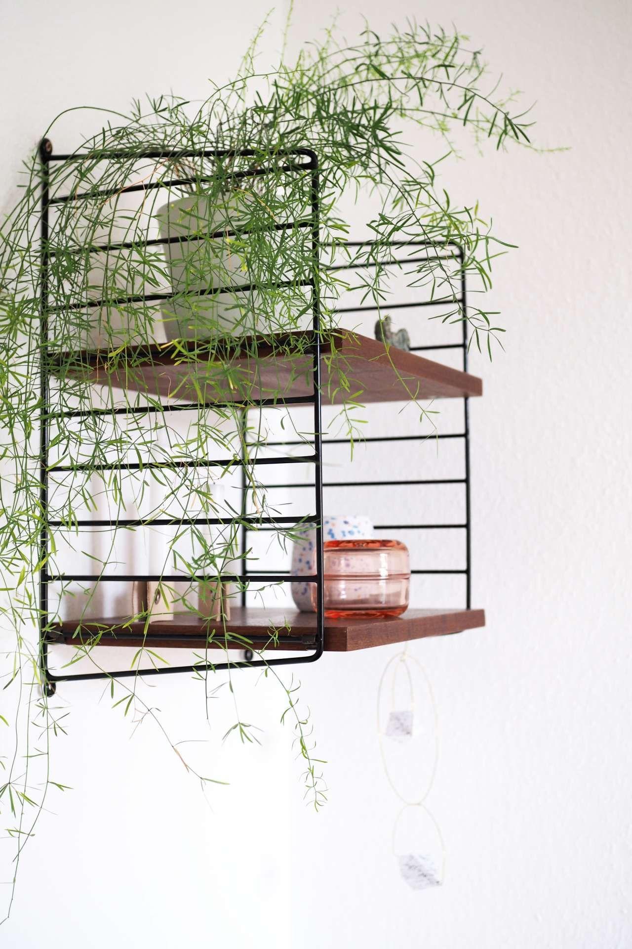 Mein Zuhause: Wohnen mit Pflanzen | Ikea ivar, Grüne wohnzimmer und ...
