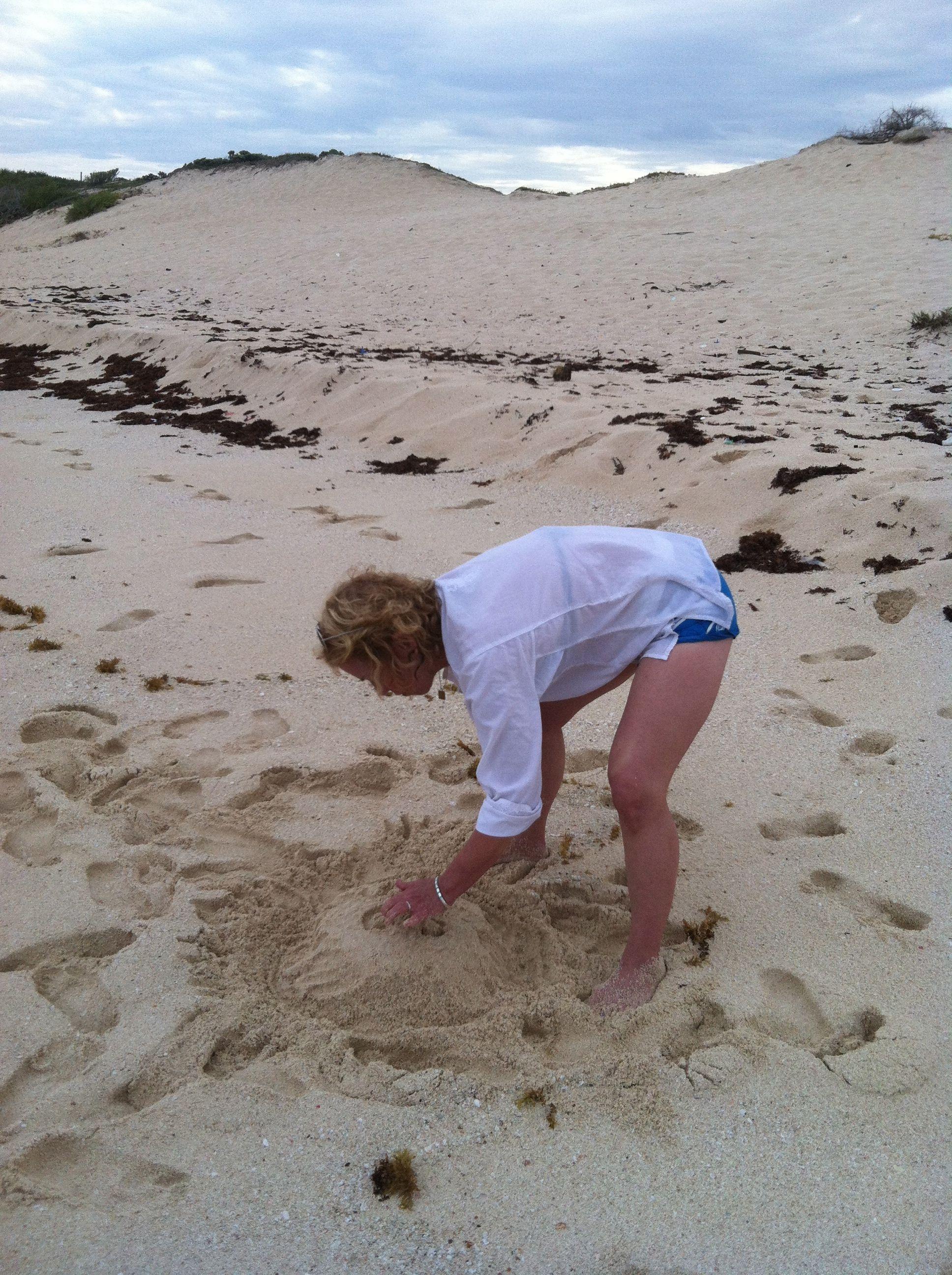Fun in the sand...
