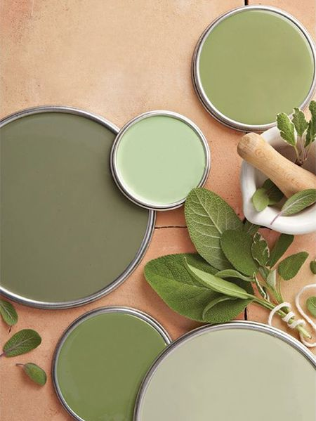 Decorate Your Living Spaces With Sage, Warm Sage Green Paint