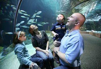 Aquariums near me | Omaha zoo, City zoo, Topeka zoo