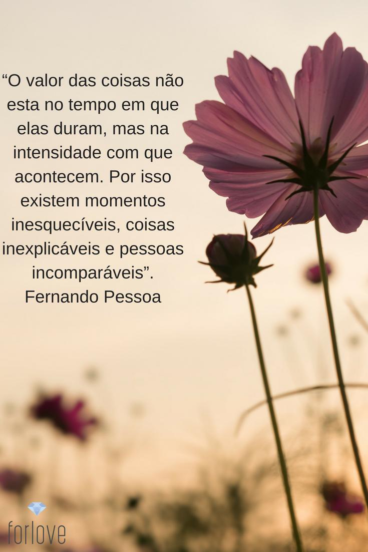 Pétalas Soltas L Pictures Frases Quotes E Words