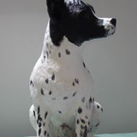 Jack Russel Art The name might make you think of a bitch but it was a he. A cross between a Jack Russell and something else....This dog lived all his life in France. He passed on twenty years ago.