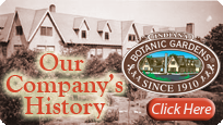 Botanic Choice has been providing America with the finest quality herbs, vitamins, natural remedies, and natural beauty products since 1910.